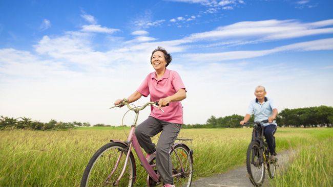 Exercise and the ageing brain